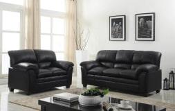 Parker Sofa and Loveseat Set (Black)